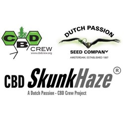 CBD SkunkHaze Feminizowane (Dutch Passion)