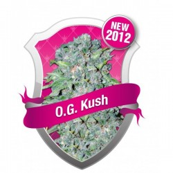 OG Kush Feminized (Royal Queen Seeds)