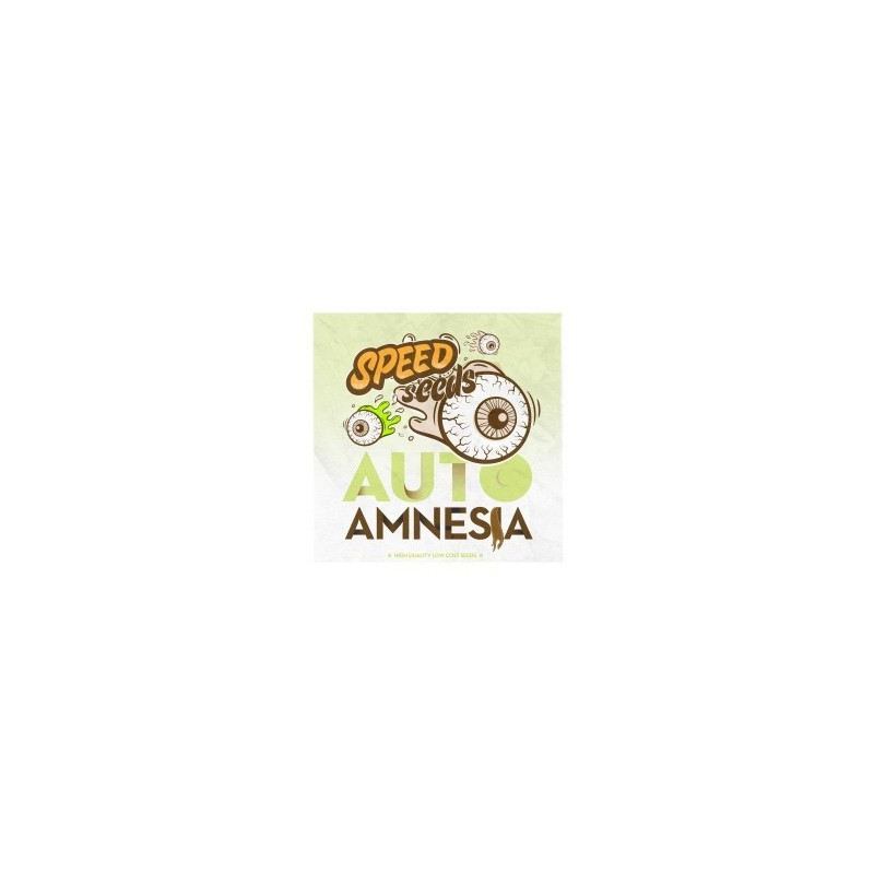 Amnesia Auto Feminized (Speed Seeds)