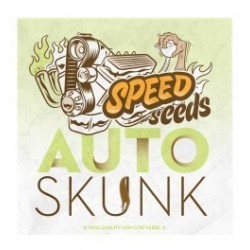 Skunk Auto Feminized (Speed Seeds)