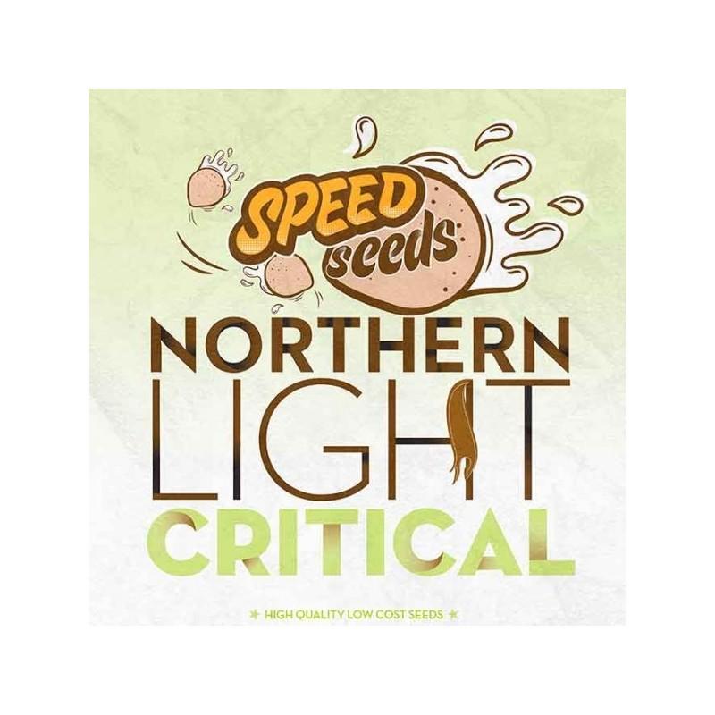 NORTHERN LIGHT X CRITICAL  Feminized (Speed Seeds)