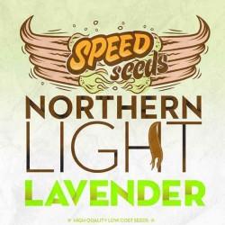NORTHERN LIGHT X LAVENDER Feminizowane (Speed Seeds)