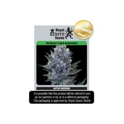 Northern Light Automatic Feminizowane (Royal Queen Seeds)