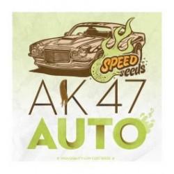 AK47 Auto Feminizowane (Speed Seeds)