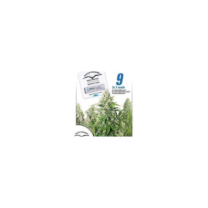 High Potency Autoflowering Mix Feminized (Dutch Passion)