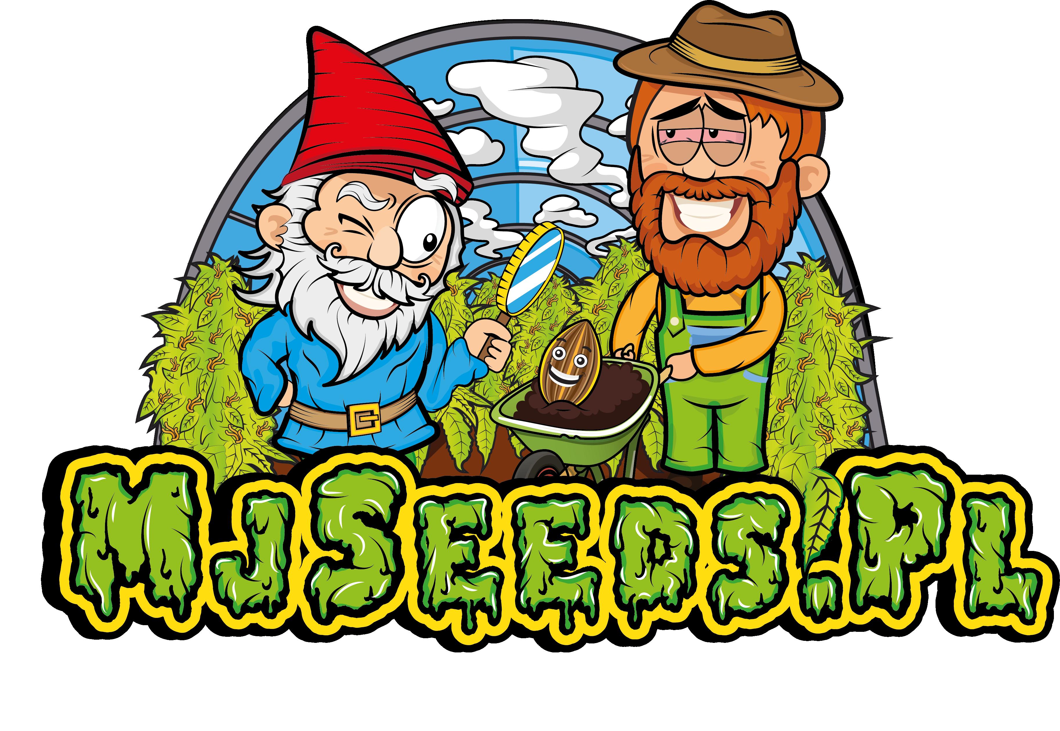 Mj Seeds